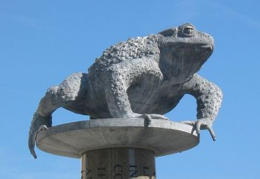 800px-crapaud_st_helier_jersey
